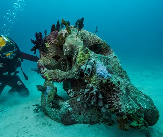 Damien Hirst: Treasures from the Wreck of the Unbelievable